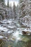 Fiume di inverno Immagine Stock