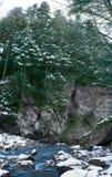 Fiume di inverno al piede della montagna fotografie stock libere da diritti