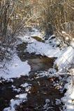 Fiume di inverno con neve Fotografia Stock Libera da Diritti
