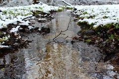 Fiume di inverno nella foresta Immagini Stock Libere da Diritti
