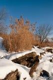 Fiume di inverno shallowed spiaggia. Fotografia Stock Libera da Diritti