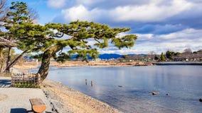 Fiume di Kamogawa (Kyoto, Giappone) Fotografie Stock Libere da Diritti