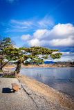 Fiume di Kamogawa (Kyoto, Giappone) Immagine Stock