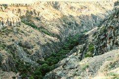 Fiume di Kasakh del canyon con lo shoresdel bydegli alberied i bloccaggi delle pietre del basalto Fotografia Stock