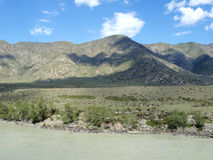 Fiume di Katun in Altai Immagine Stock