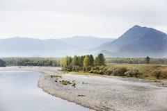 Fiume di Katun Paesaggio di autunno di Altai della montagna Fotografia Stock