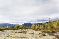 Fiume di Katun Paesaggio di autunno di Altai della montagna Fotografie Stock