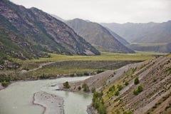 Fiume di Katun Paesaggio di Altai Fotografia Stock