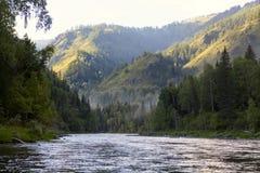 Fiume di Katun Paesaggio di Altai della montagna La Russia Fotografia Stock Libera da Diritti