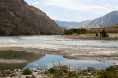 Fiume di Katun Paesaggio di Altai della montagna La Russia Fotografie Stock Libere da Diritti