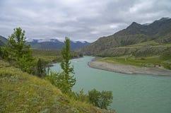 Fiume di Katun un giorno nuvoloso Montagne di Altai Fotografie Stock