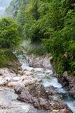 Fiume di Kokra nelle colline pedemontana Immagine Stock Libera da Diritti