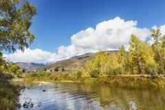 Fiume di Koksan Paesaggio di Altai della montagna Fotografia Stock Libera da Diritti