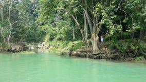 Fiume di Loboc, Filippine Fotografie Stock