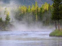 Fiume di Madison, Yellowstone N P. Fotografie Stock