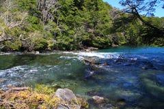 Fiume di Manso - Patagonia - l'Argentina Immagini Stock