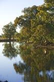 Fiume di Maquarie Fotografia Stock
