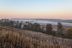 Fiume di mattina in foresta fotografia stock libera da diritti