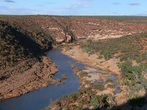 Fiume di Murchison, parco nazionale di Kalbarri in Australia occidentale fotografie stock libere da diritti