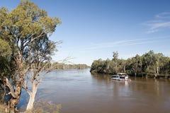 Fiume di Murray in inondazione Fotografie Stock
