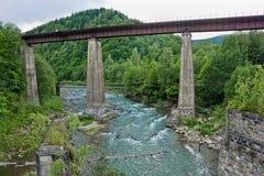 Fiume di Prut nei Carpathians Immagine Stock