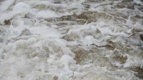 Fiume di ribollimento della montagna wildlife Un fiume infuriantesi della montagna in primavera video d archivio