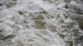 Fiume di ribollimento della montagna wildlife Un fiume infuriantesi della montagna in primavera archivi video