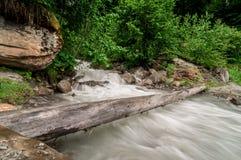 fiume di ribollimento nella foresta Fotografia Stock