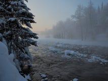 Fiume di Sarva durante l'inverno Fotografie Stock Libere da Diritti