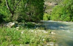 Fiume di Segre nella contea dell'alt Urgell Immagine Stock
