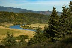 Fiume di Sixes, parco di stato di Blanco del capo, Oregon Immagine Stock