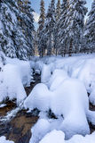 Fiume di Snowy Fotografia Stock