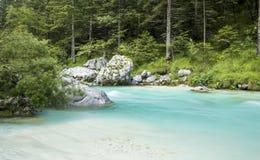 Fiume di Soca nel parco nazionale di Triglav Fotografia Stock