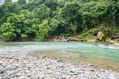 Fiume di Tangkahan, Indonesia Il paradiso nascosto in Sumatera immagini stock