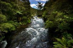Fiume di Tarawera, Nuova Zelanda Fotografie Stock