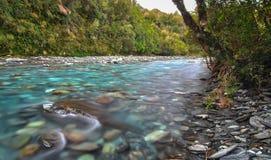 Fiume di Toaroha, Nuova Zelanda immagine stock