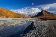 Fiume di Toklat della sosta nazionale dell'Alaska Denali Fotografie Stock Libere da Diritti
