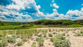 Fiume di Veleka prima della sua fusione nel Mar Nero, con la piccola parte della spiaggia La Bulgaria, Sinemorets Immagine Stock