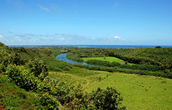 Fiume di Wailua sull'isola di Kauai Fotografie Stock Libere da Diritti
