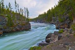 Fiume di Yellowstone Fotografie Stock