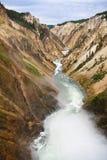 Fiume di Yellowstone Fotografie Stock Libere da Diritti