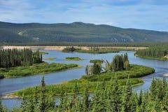 Fiume di Yukon Fotografia Stock