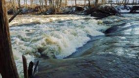 Fiume durante l'inondazione della molla video d archivio