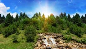 Fiume e foresta della montagna alti nelle montagne Fotografia Stock Libera da Diritti