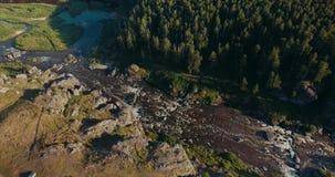 Fiume e foresta della montagna dal colpo aereo video d archivio