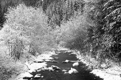 Fiume e foresta nella stagione invernale Fotografie Stock Libere da Diritti