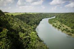 Fiume e foresta tropicale Fotografia Stock