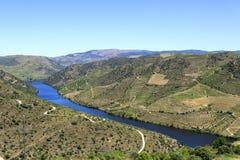 """Fiume e vigne del †della valle del Duero """" Fotografie Stock"""