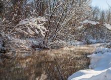 Fiume ed alberi di inverno nella stagione Fotografia Stock