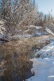 Fiume ed alberi di inverno nella stagione Fotografia Stock Libera da Diritti